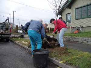 Eliot Neighbors Planting with Friends of Trees