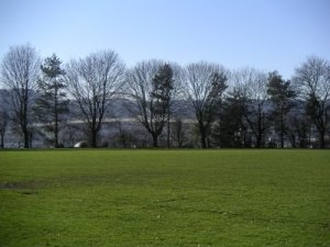 Lillis-Albina Park - Feb 2007