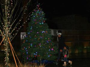 Tree at MLK Gateway. Courtesy NNEBA