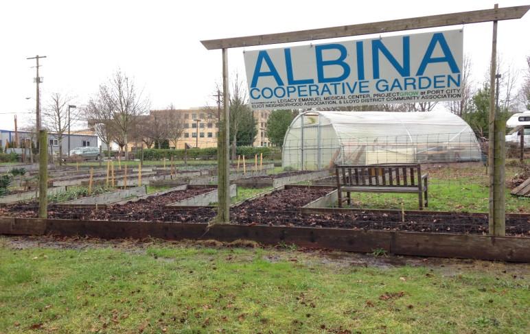Albina Cooperative Garden