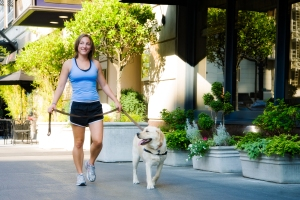 Hot Diggity dog walker walking a dog