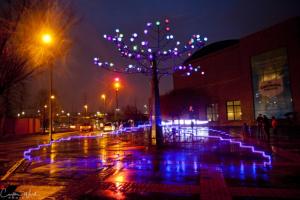 Tree light up for Festival of Lights